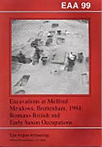 Excavations at Melford Meadows, Brettenham, 1994