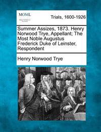 Summer Assizes, 1873. Henry Norwood Trye, Appellant; The Most Noble Augustus Frederick Duke of Leinster, Respondent