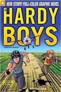 Hardy Boys #19: Chaos at 30,000 Feet!