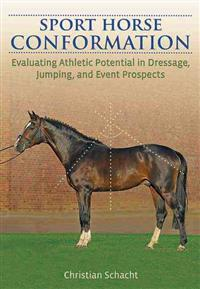 Sport Horse Conformation: Evaluating Athletic Potential in Dressage, Jumping and Event Prospects