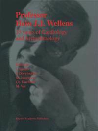 Professor Hein J.J. Wellens