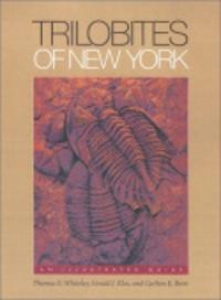 Trilobites of New York