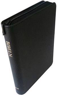 Bibeln : gamla och nya testamentet
