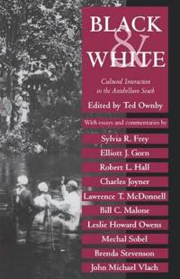 Black and White Cultural Interaction in the Antebellum South