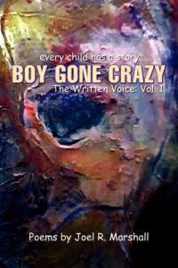 Boy Gone Crazy