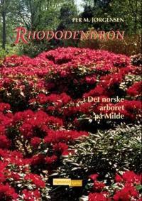Rhododendron - Per M. Jørgensen | Ridgeroadrun.org