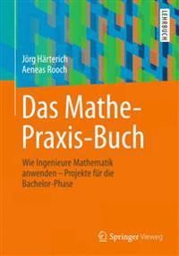 Das Mathe-Praxis-Buch: Wie Ingenieure Mathematik Anwenden - Projekte Fur Die Bachelor-Phase