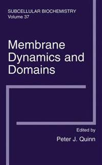 Membrane Dynamics And Domains