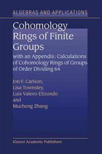 Cohomology of Rings of Finite Groups