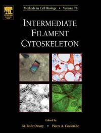 Intermediate Filament Cytoskeleton