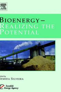 Bioenergy - Realizing the Potential