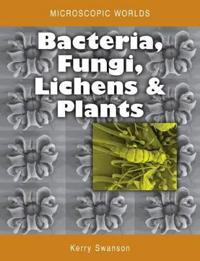 Bacteria, Fungi, Lichens and Plants