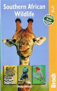 Bradt Southern African Wildlife