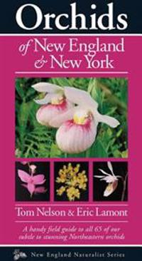 Orchids of New England & New York