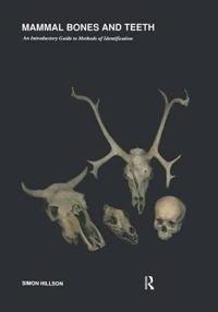 Mammal Bones and Teeth