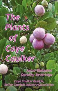 The Plants of Caye Caulker