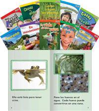 Time for Kids Informational Text Grade 1 Readers Spanish Set 1 10-Book Set (Time for Kids Nonfiction Readers)