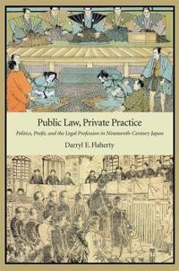 Public Law, Private Practice