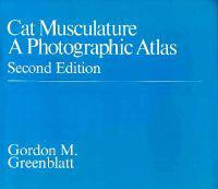 Cat Musculature