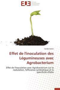 Effet de l'inoculation des Légumineuses avec Agrobacterium