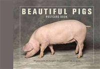 Beautiful Pigs Postcard Book