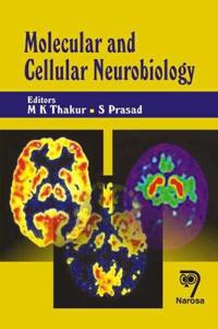 Molecular And Cellular Neurobiology