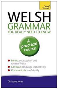 Welsh Grammar You Really Need to Know