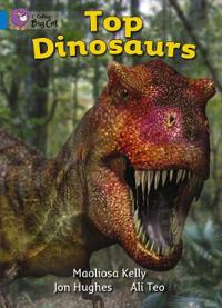 Top Dinosaurs Workbook