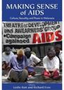 Making Sense of AIDS