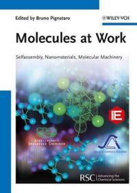 Molecules at Work
