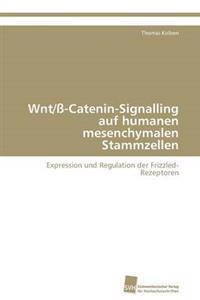Wnt/SS-Catenin-Signalling Auf Humanen Mesenchymalen Stammzellen