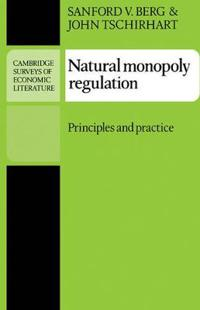 Natural Monopoly Regulation
