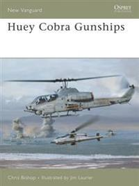 Huey Cobra Gunships