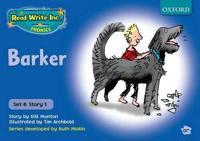 Read Write Inc. Phonics: Blue Set 6 Storybooks: School Pack of 100 (10x10 Titles)
