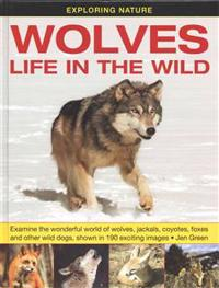 Exploring Nature: Wolves - Life in the Wild: Examine the Wonderful World of Wolves, Jackals, Coyotes, Foxes and Other Wild Dogs, Shown in 190 Exciting