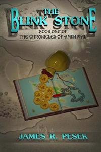 The Blink Stone: Book One of the Chronicles of Amishval