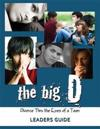 The Big D; Divorce Thru the Eyes of a Teen: 3 Volume Set