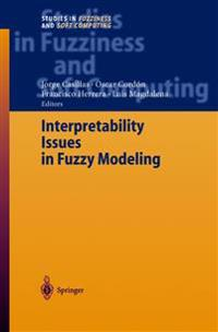 Interpretability Issues in Fuzzy Modeling