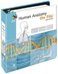 Human Anatomy on File