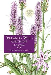 Ireland's Wild Orchids: A Field Guide