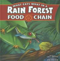 What Eats What in a Rain Forest Food Chain