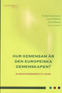 Hur gemensam är den europeiska gemenskapen. Europaperspektiv 2009