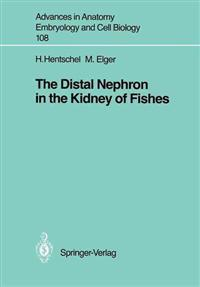 The Distal Nephron in the Kidney of Fishes
