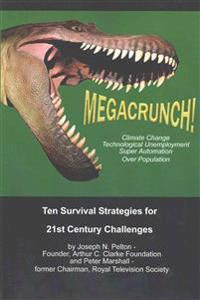 Megacrunch!: Ten Survival Strategies for 21st Century Challenges