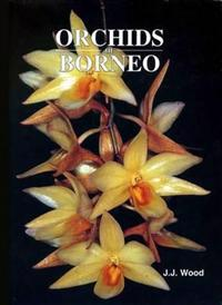 Orchids of Borneo