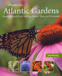 Plants for Atlantic Gardens: Handsome and Hard-Working Shrubs, Trees, and Perennials