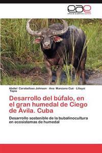 Desarrollo del Bufalo, En El Gran Humedal de Ciego de Avila. Cuba