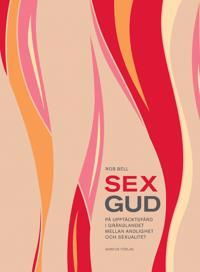 Sexgud : på upptäcktsfärd i gränslandet mellan andlighet och sexualitet