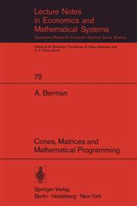 Cones, Matrices and Mathematical Programming