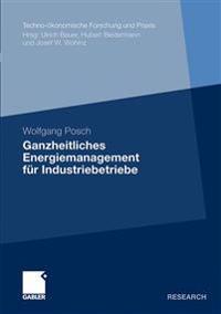 Ganzheitliches Energiemanagement F r Industriebetriebe